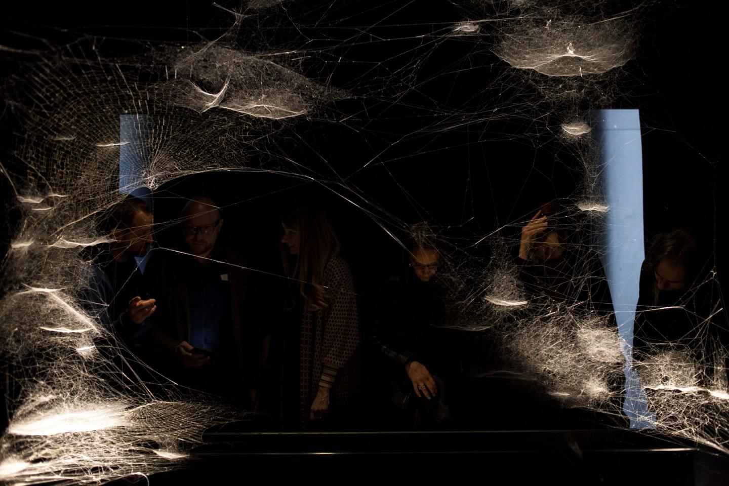 Tomás Saraceno, Spider/Web Pavilion 7: Oracle Readings, Weaving Arachnomancy, Synanthropic Futures: At-ten(t)sion to invertebrate rights!, 2019. Mixed media. © Francesco Galli. Courtesy: La Biennale di Venezia